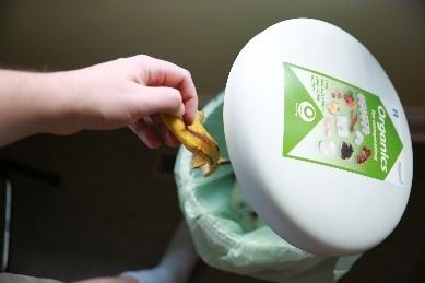 Food scraps recycling
