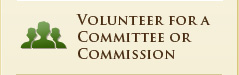 Volunteer for a Committee or Commission